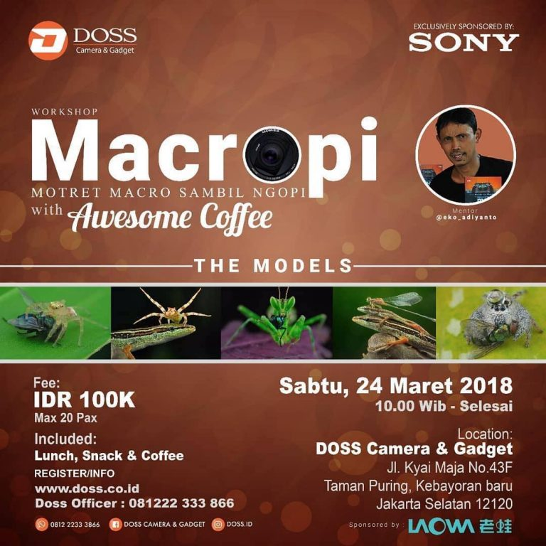 Workshop LAOWA with MACROPI